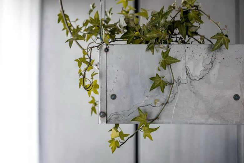 Промышленный дизайн растение