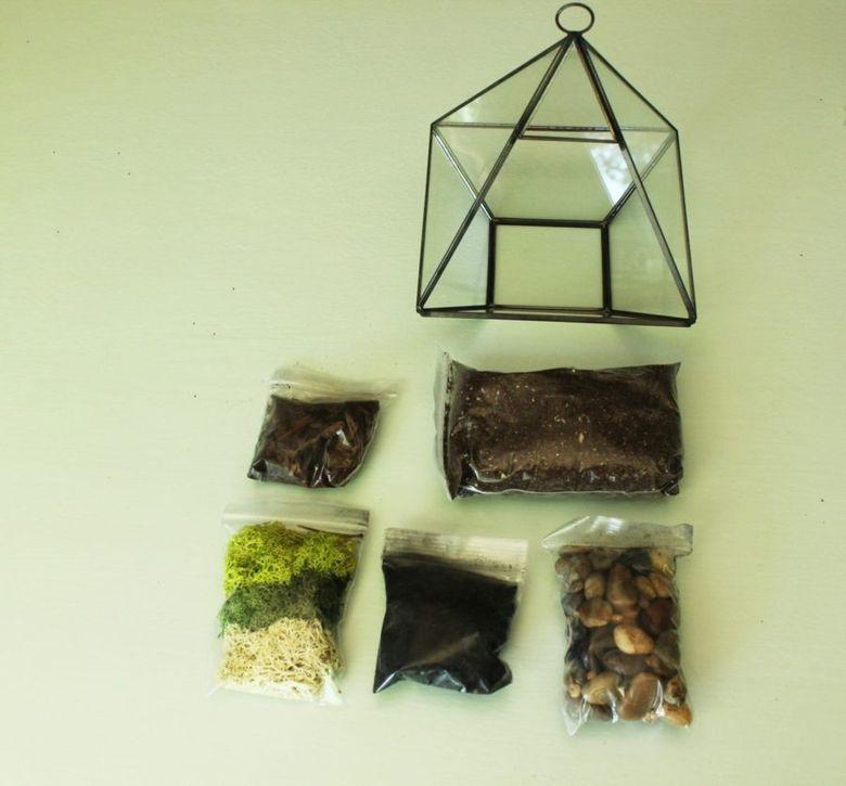 Террариум для растений материалы