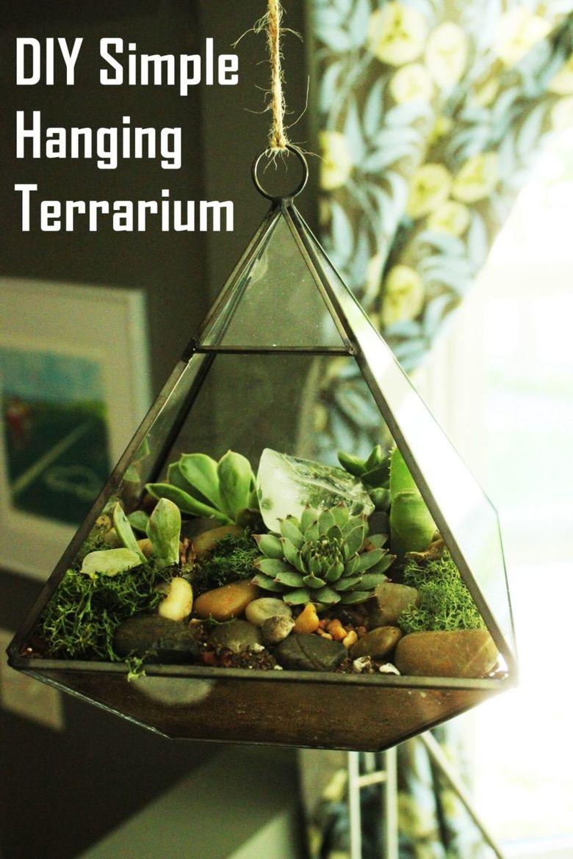 Террариум для растений сделай сам