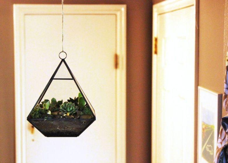 Террариум для растений создавайте сами
