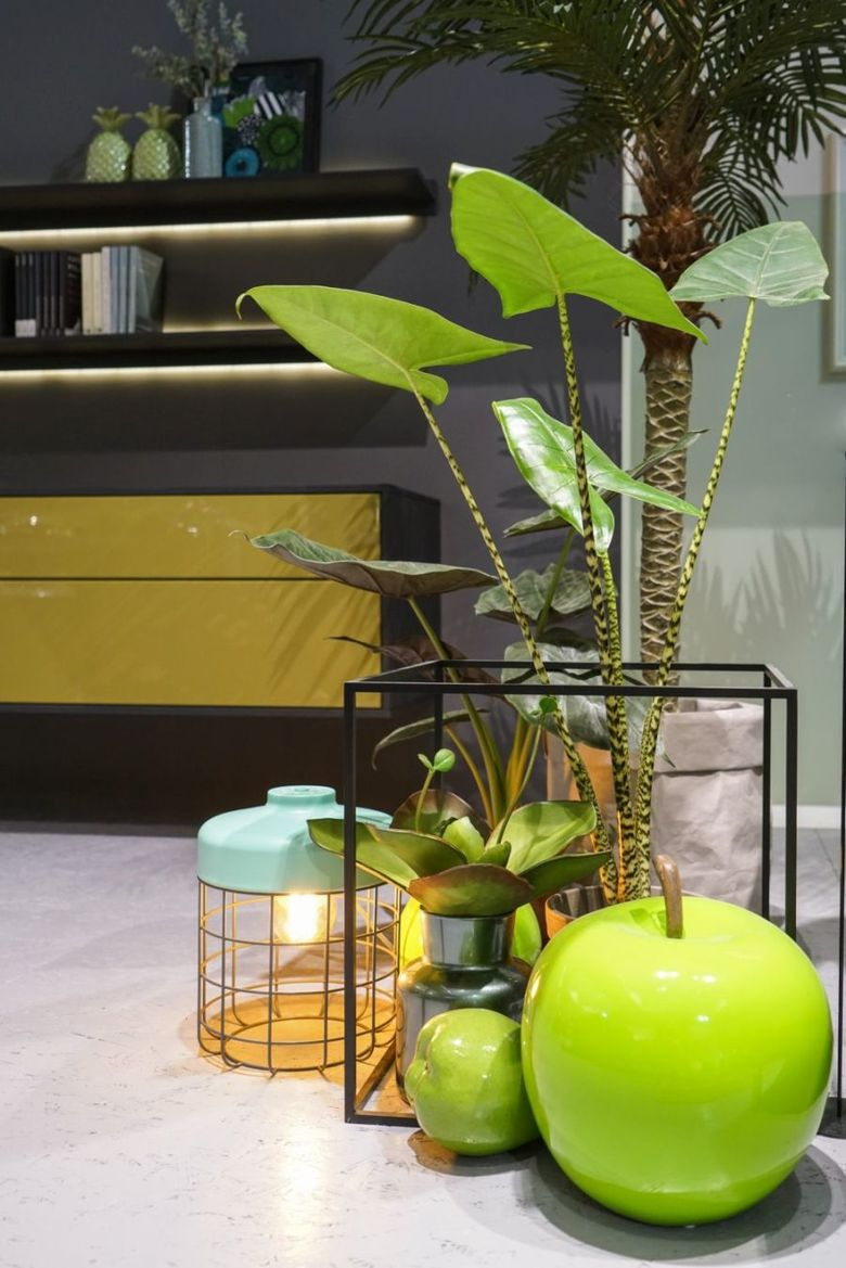 растения и природные детали