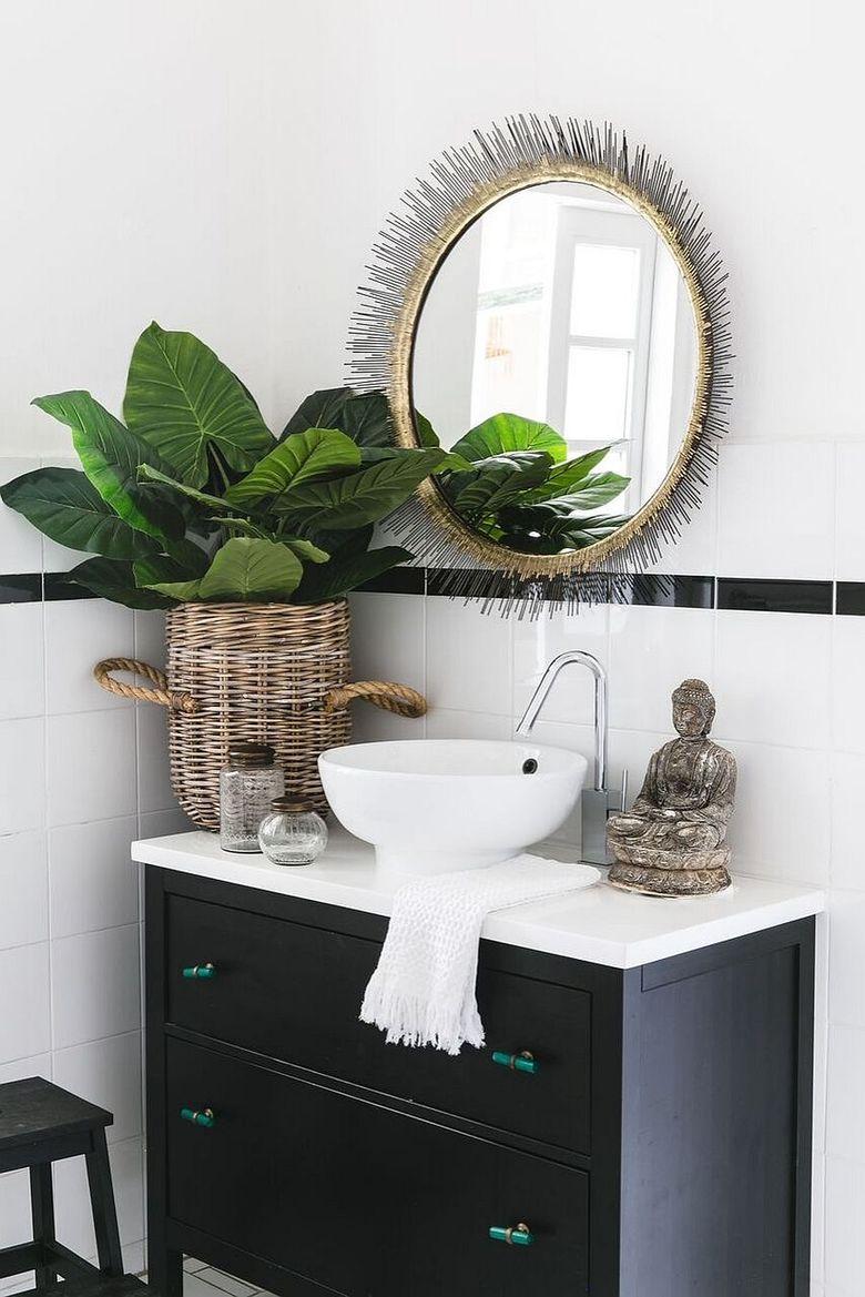 Туалетная комната комнатное растение