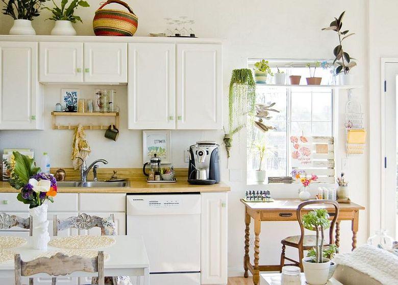 Кухня в стиле ретро комнатные растения